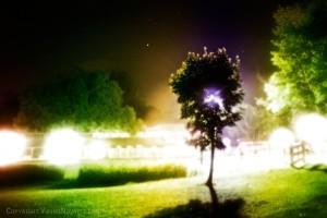 treeoflight_web